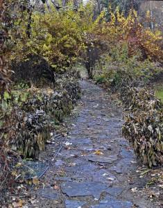 path through November